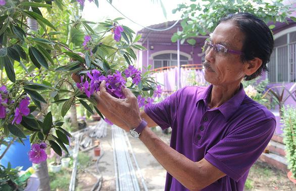 Thăng trầm làng hoa Sa Đéc - Kỳ 4: Tình yêu màu tím - Ảnh 1.