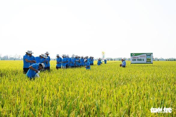 Truy thu thuế Tập đoàn Lộc Trời trên 51 tỉ đồng - Ảnh 2.