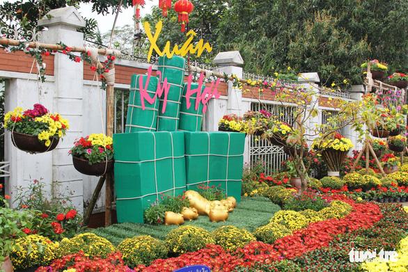 Hàng loạt giỏ hoa trang trí tết trên đường phố Nghệ An bị trộm - Ảnh 4.
