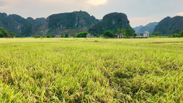 Về núi rừng hùng vĩ ở cố đô Ninh Bình - Ảnh 4.