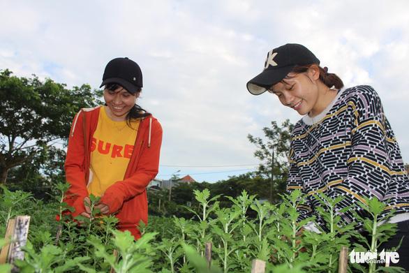 Sinh viên làm nông, buôn bán, kiếm chục triệu đồng giáp Tết - Ảnh 1.
