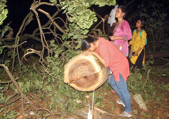 Tòa cho phép chặt cây để mở tuyến metro, người dân ôm cây khóc - Ảnh 3.