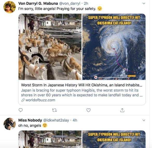 Người Nhật bỏ người, cầu nguyện cho mèo trong siêu bão Hagibis? - Ảnh 3.