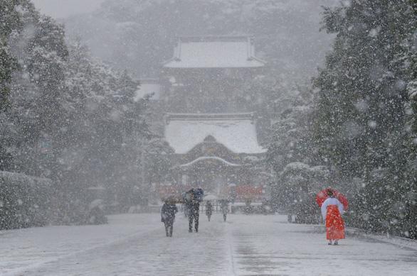 Tại sao người Nhật luôn đoàn kết và kiên cường trong thảm họa? - Ảnh 2.