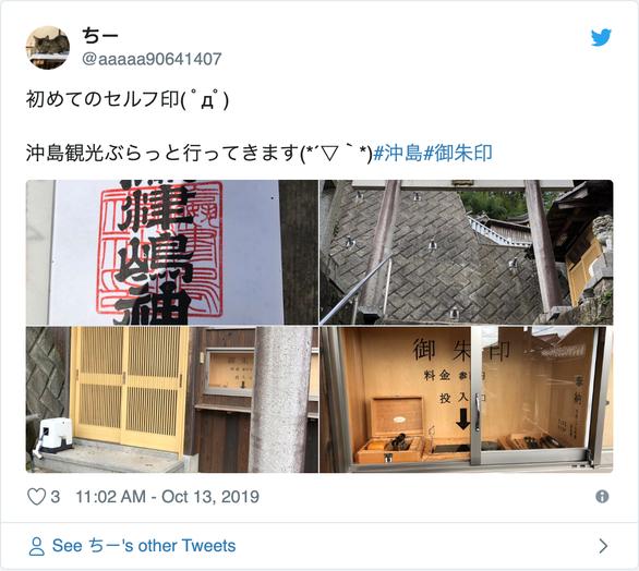 Người Nhật giải cứu đảo mèo Okishima giữa bão Hagibis chỉ là tin vịt - Ảnh 4.