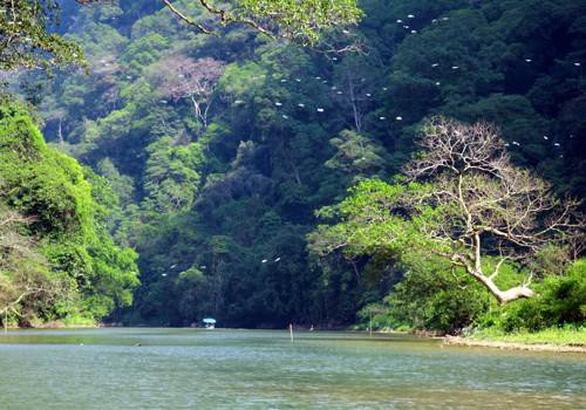 Dự án Tam Đảo 2: Báo cáo đánh giá tác động môi trường được thẩm định chặt chẽ - Ảnh 3.