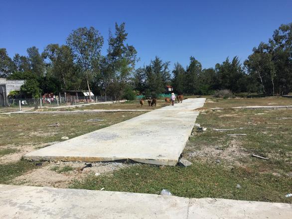 Vụ vẽ dự án ma trên đất nông nghiệp Quảng Nam: không có dấu hiệu lừa đảo? - Ảnh 1.