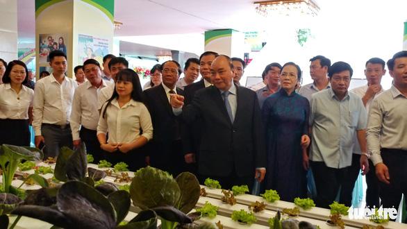 10 năm xây dựng nông thôn mới, nông dân Hải Phòng thu bình quân 55 triệu đồng/năm - Ảnh 1.