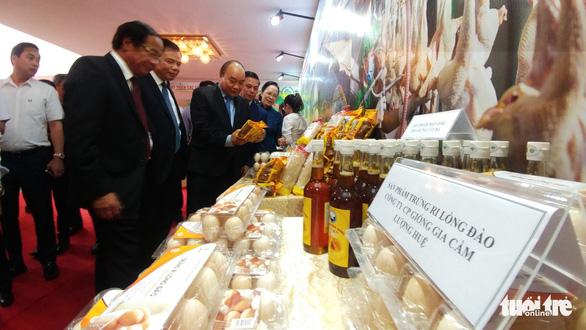 10 năm xây dựng nông thôn mới, nông dân Hải Phòng thu bình quân 55 triệu đồng/năm - Ảnh 2.