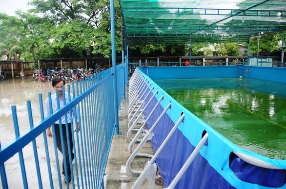 Thị xã ra hẳn nghị quyết để dạy bơi cho học sinh - Ảnh 1.