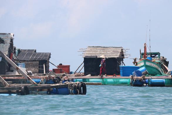 Cá chết hàng loạt nghi do ô nhiễm, dân thiệt hại tiền tỉ - Ảnh 1.