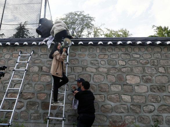 Sinh viên Hàn Quốc trèo vào nơi ở đại sứ Mỹ phản đối hiện diện quân sự - Ảnh 2.