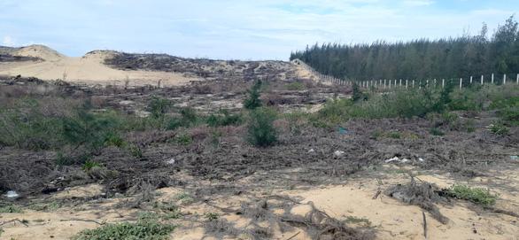 Dừng dự án điện gió chậm tiến độ 8 năm, để mất 140ha rừng - Ảnh 1.