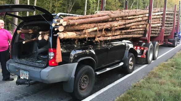 Thoát chết hi hữu khi hàng chục cây gỗ đâm xuyên ôtô - Ảnh 2.