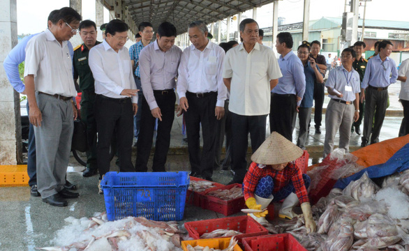 Nỗ lực gỡ thẻ vàng của EC đối với hải sản khai thác ở Việt Nam - Ảnh 1.