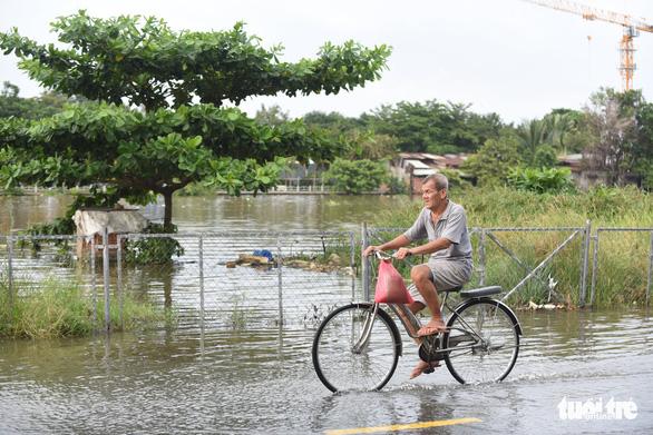 Gió mùa đông bắc gây mưa lớn miền Bắc, triều cường cao ở miền Nam - Ảnh 7.