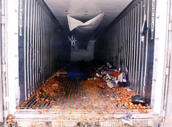 Container, địa ngục trần gian chở người nhập cư sang Anh - Ảnh 4.