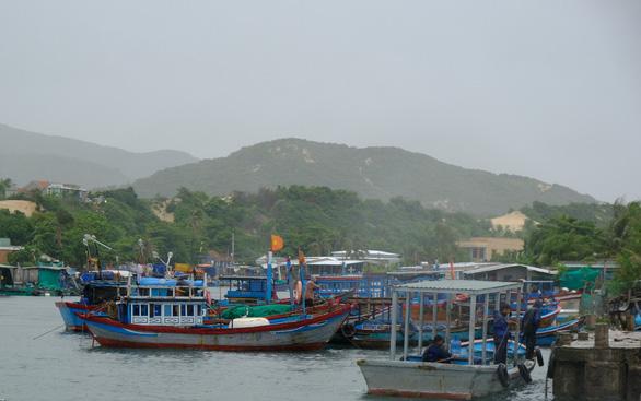 Người nuôi thủy sản trên vịnh Vân Phong hối hả bán cá chạy bão số 5 - Ảnh 3.