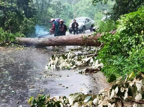 Sạt lở đất, lũ ống chia cắt miền núi Quảng Nam - Ảnh 4.