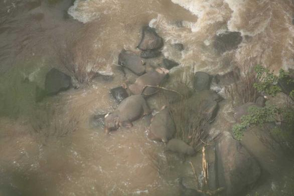6 con voi mất mạng vì rơi xuống thác nước - Ảnh 1.