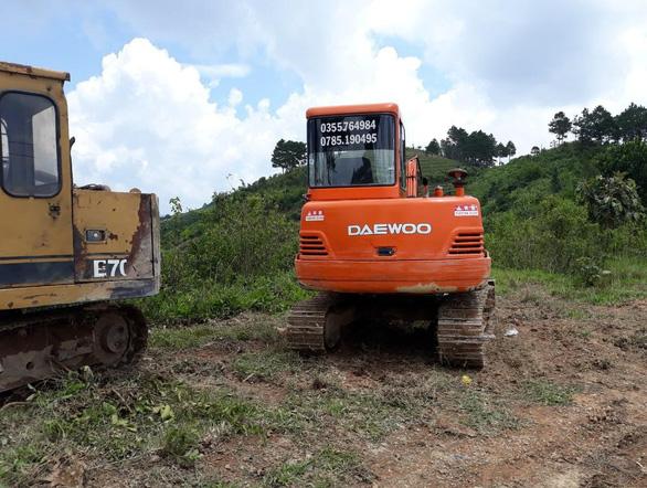 2 hecta rừng thông Lâm Đồng bị phá, kiểm lâm và thủ phạm đều... chưa rõ - Ảnh 3.