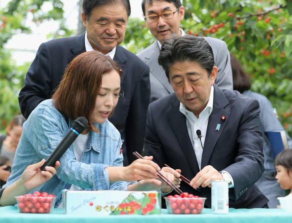 Thủ tướng Nhật lội ngược dòng: Đừng xem nhựa là kẻ thù! - Ảnh 1.