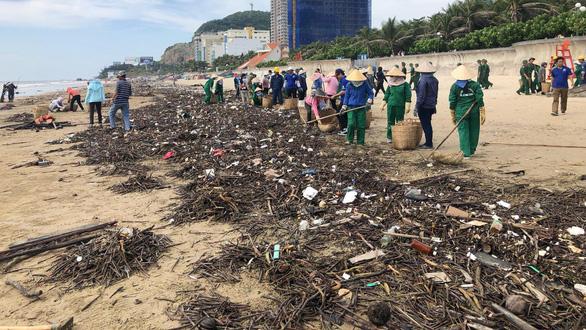 10 cây số rác, thân cây và nhựa tấn công bãi biển Vũng Tàu - Ảnh 1.