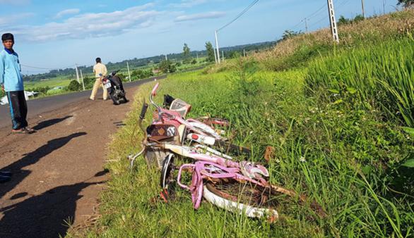 Xe biển xanh tông vào nhóm học sinh đi xe đạp, 3 em nhập viện - Ảnh 1.