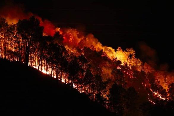 4 năm cả nước mất 6.400ha rừng do cháy - Ảnh 1.