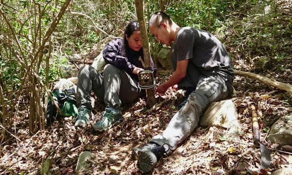 Phát hiện cheo cheo lưng bạc lần đầu ở Việt Nam trong gần 30 năm - Ảnh 3.