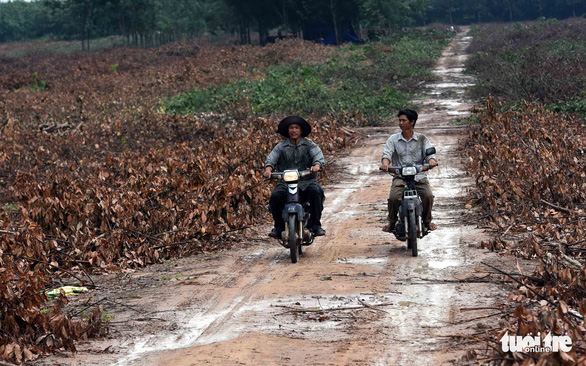 Bộ trưởng Nguyễn Văn Thể: 'Hiệu quả kinh tế của dự án sân bay Long Thành rất cao' - Ảnh 2.