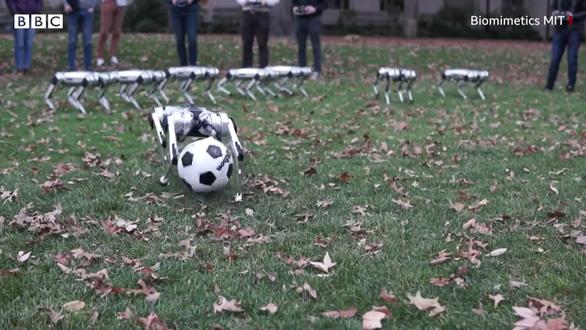 Video chó robot chơi đá bóng và nhảy lộn ngược đẹp mắt - Ảnh 2.