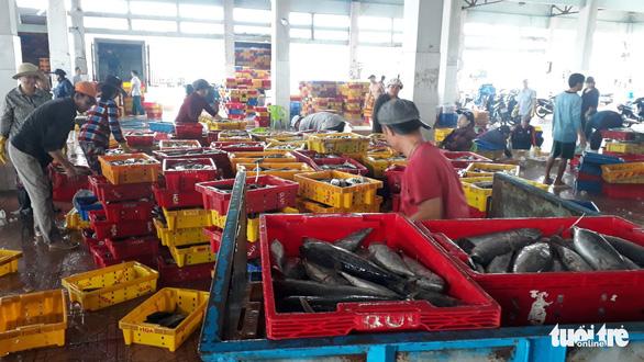 Hàng trăm tấn cá ồ ạt cập cảng Quy Nhơn sau bão số 6 - Ảnh 2.