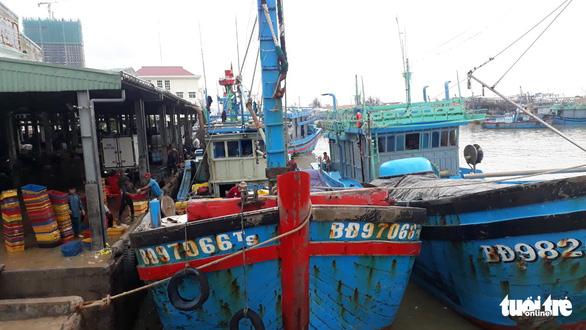 Hàng trăm tấn cá ồ ạt cập cảng Quy Nhơn sau bão số 6 - Ảnh 3.