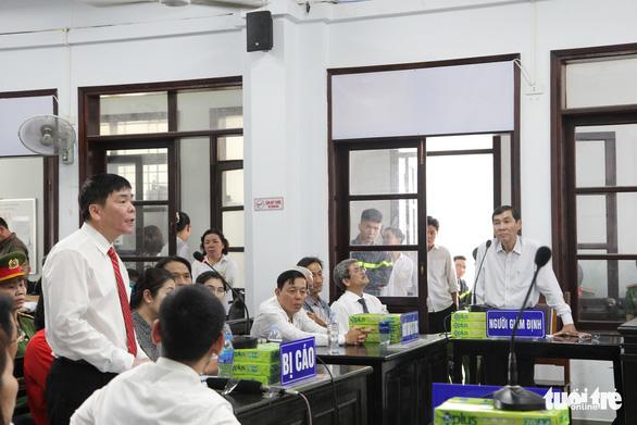 Đề nghị phạt vợ chồng luật sư Trần Vũ Hải 12-15 tháng cải tạo không giam giữ - Ảnh 1.