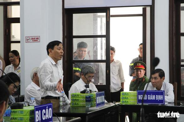 Đề nghị phạt vợ chồng luật sư Trần Vũ Hải 12-15 tháng cải tạo không giam giữ - Ảnh 3.