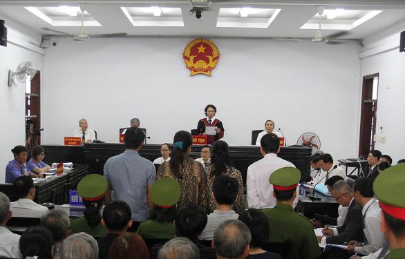 Vợ chồng luật sư Trần Vũ Hải bị phạt 12 tháng cải tạo không giam giữ - Ảnh 1.