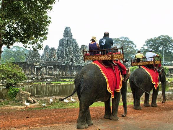 Campuchia cấm du khách cưỡi voi ở Angkor - Ảnh 1.