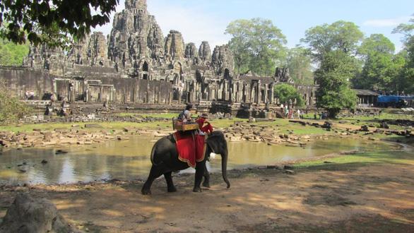 Campuchia cấm du khách cưỡi voi ở Angkor - Ảnh 2.
