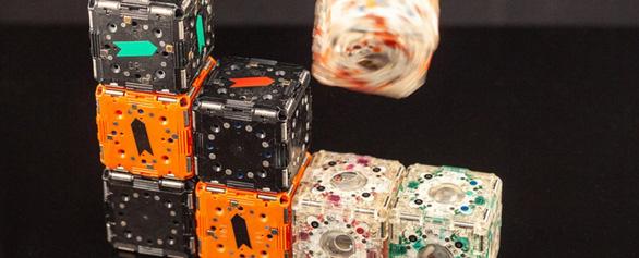 Robot tự xếp hình, trèo lên nhau lắp ráp như phim - Ảnh 2.