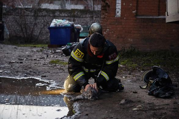 Lính PCCC giúp mèo thở oxy trong đám cháy thành 'người hùng' - Ảnh 2.