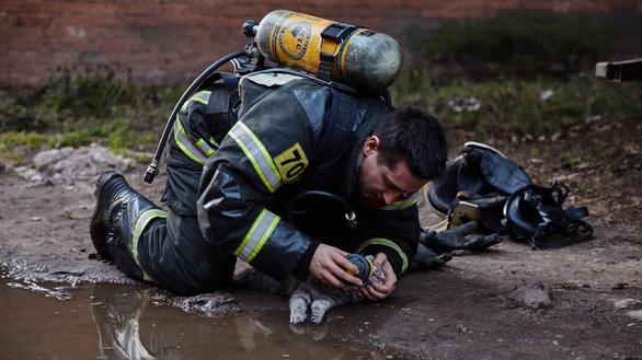 Lính PCCC giúp mèo thở oxy trong đám cháy thành 'người hùng' - Ảnh 3.