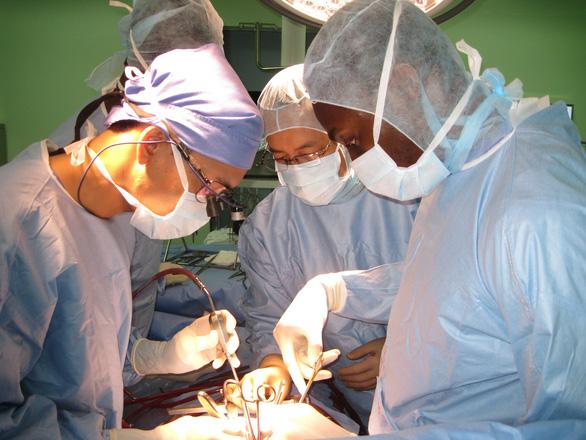 Nhiều ca ghép tim thành công từ người cho chết não - Ảnh 1.