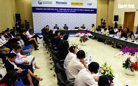 Chính sách với bất động sản: Việt Nam không nên phân biệt trong và ngoài nước - Ảnh 1.