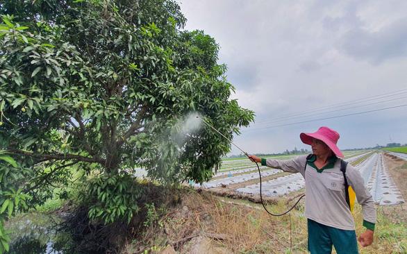 Sắp xếp nông, lâm trường: hạn chót năm 2020 - Ảnh 1.