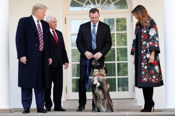 Ông Trump trao huân chương cho chó Conan hỗ trợ tiêu diệt trùm IS - Ảnh 1.