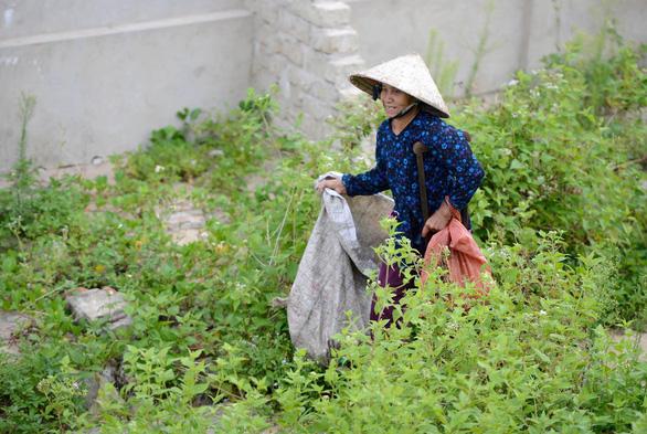 Bà cụ nhặt rác một chân ở bãi biển Gio Linh và điều ước một lần được thăm lăng Bác - Ảnh 2.