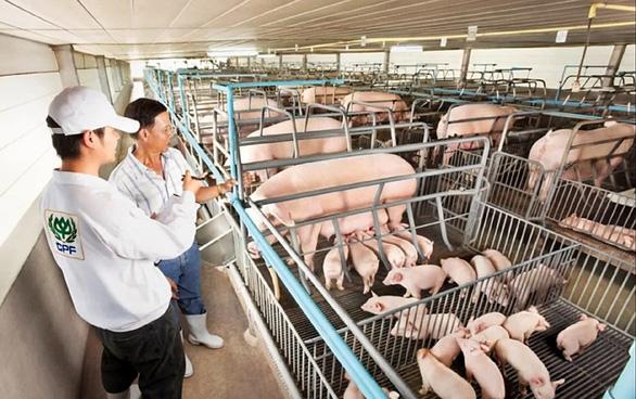 Nông nghiệp châu Á cầu cứu công nghệ - Ảnh 1.