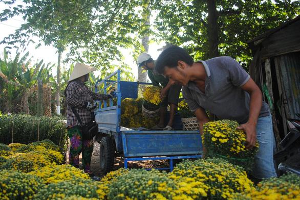 Thí điểm thu phí khách tham quan làng hoa Sa Đéc - Ảnh 1.