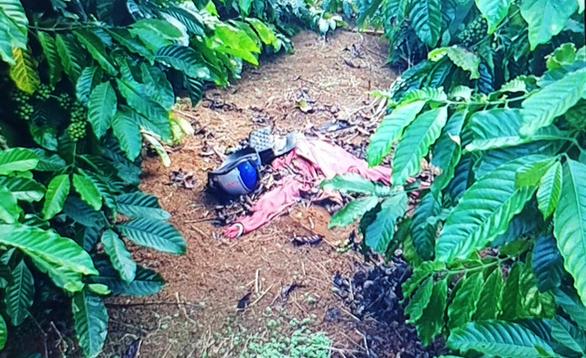 Bắt thầu xây dựng giết người tình bỏ xác ngoài vườn cà phê - Ảnh 1.
